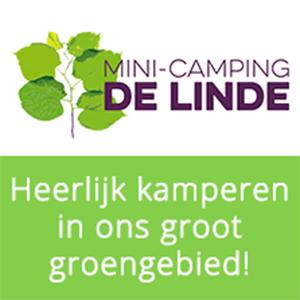 Logo Mini Camping De Line